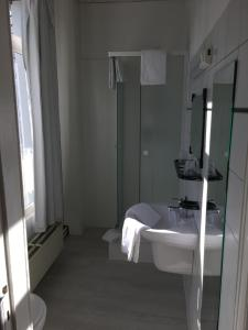 Parkhotel Villa des Effats Vielsalm, Hotels  Vielsalm - big - 25