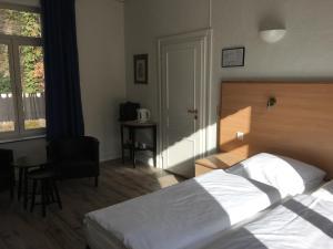 Parkhotel Villa des Effats Vielsalm, Hotels  Vielsalm - big - 21
