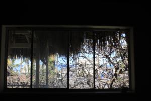 Casita de Árbol, Ferienwohnungen  Loreto - big - 6