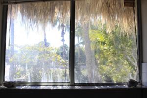 Casita de Árbol, Ferienwohnungen  Loreto - big - 3