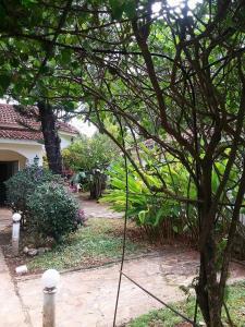 Casa La Mulata, Vily  La Atravesada - big - 15