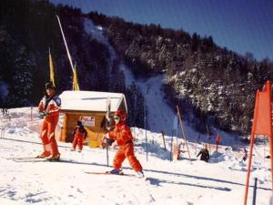 Chalet Les Chalets Des Ayes 6, Шале  Le Ménil - big - 35