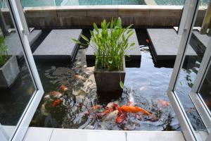 Studio in Haven, Apartments  Bangkok - big - 42