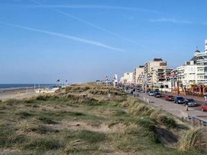 Holiday home Blue Lagoon, Apartments  Noordwijk - big - 24