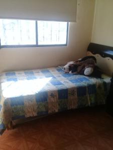 Casa en privada, Alloggi in famiglia  Toluca - big - 13