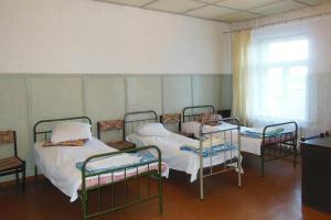 Depo, Hostelek  Gulbene - big - 21