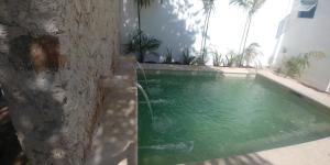 Hostel Le Juj, Vendégházak  Mérida - big - 29