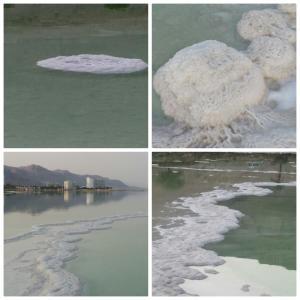 Nadia Hosting Dead Sea, Turistaházak  Neve Zohar - big - 49