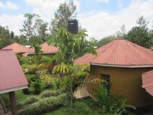 Kilimanjaro Eco Lodge
