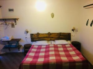 Amazon Petite Palace, Pensionen  Selcuk - big - 14