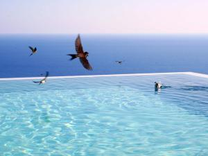 Tainaron Blue Retreat (33 of 48)
