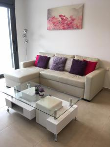 Luxury 3 bedroom 3 bathroom house, Playa Flamenca, Case vacanze  Playa Flamenca - big - 46