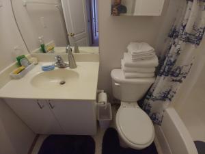 Arbour Lake Spacious Guest Suite, Penzióny  Calgary - big - 33