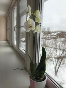Guest house 7 vecherov