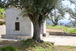 Il Giglio, Фермерские дома  Pettineo - big - 8