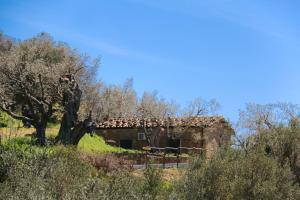 Il Giglio, Bauernhöfe  Pettineo - big - 62