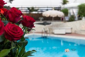 Hotel Villa La Colombaia, Hotels  Portici - big - 132