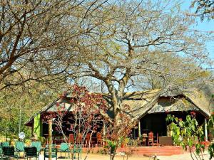 Kwalape Safari Lodge, Turistaházak  Kasane - big - 40