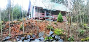Packwood Ski or Vacation Getaway, Case vacanze  Packwood - big - 38