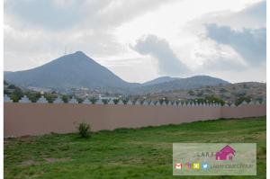 Dar Alward - Alshfa, Rezorty  Al Shafa - big - 12
