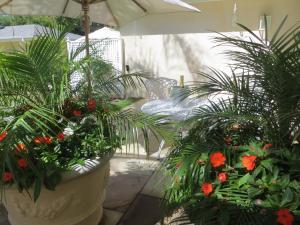 Luxe Suite met uitzicht op de tuin