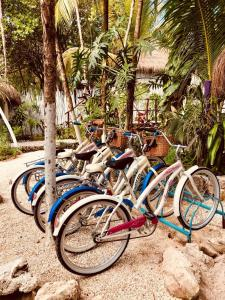 Chancabañita Tulum, Bed & Breakfasts  Tulum - big - 50