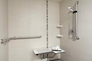 One-Bedroom Double Suite with Roll-In Shower - Mobility Access