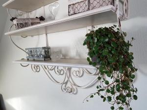 La Petite Parenthèse, Appartamenti  Honfleur - big - 42