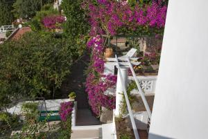 Villa Mariuccia Capri, Apartmanok  Capri - big - 56