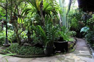 Wisma Ary's, Penzióny  Yogyakarta - big - 28