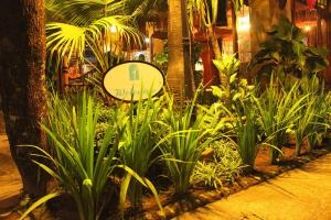 Wisma Ary's, Penzióny  Yogyakarta - big - 41