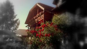 Ferienwohnungen Fischerhaus - direkt am See, Apartmanok  Millstatt - big - 63