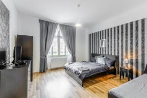Belohorska Apartment, Appartamenti  Praga - big - 7