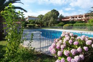 Playa Del Oro, Apartments  Favone - big - 1