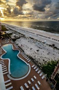 Ocean House Unit 2904 Condo, Ferienwohnungen  Gulf Shores - big - 33