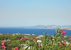 Casa Panoramica Ischia - AbcAlberghi.com