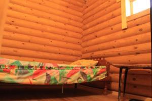 Dacha na Vyalovskom