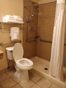 Номер с кроватью размера «king-size» - Подходит для гостей с ограниченными физическими возможностями - Для некурящих