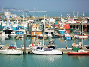 Harbour Lights, Holiday homes  Newlyn - big - 7