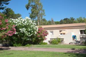 Résidence Lisa Maria, Villaggi turistici  Favone - big - 41