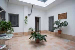 Apartamento AZAHARES de Cadiz, Апартаменты  Кадис - big - 5
