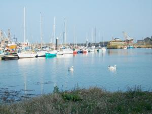 Harbour Lights, Holiday homes  Newlyn - big - 23