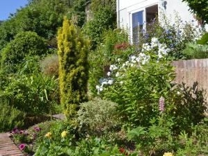 Garden View, Holiday homes  Brixham - big - 6