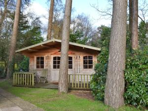 Forest Edge, Case vacanze  Saint Leonards - big - 6