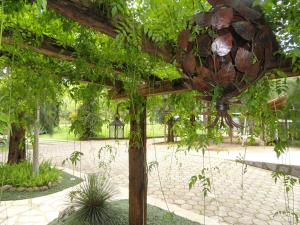 Pousada Solar dos Vieiras, Guest houses  Juiz de Fora - big - 77