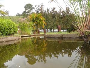 Pousada Solar dos Vieiras, Guest houses  Juiz de Fora - big - 67