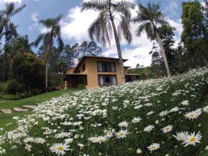 Pousada Solar dos Vieiras, Guest houses  Juiz de Fora - big - 59