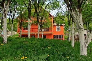 Privatni smještaj Tijanić, Pensionen  Plužine - big - 18