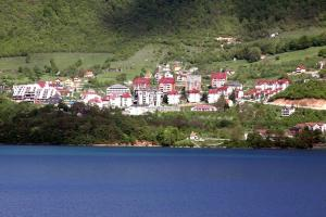 Privatni smještaj Tijanić, Pensionen  Plužine - big - 11