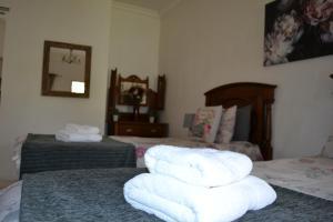 Travel North Guesthouse, Гостевые дома  Tsumeb - big - 33